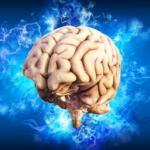 Gedächtnistraining – So bringen Sie das Gehirn wieder in Schwung!